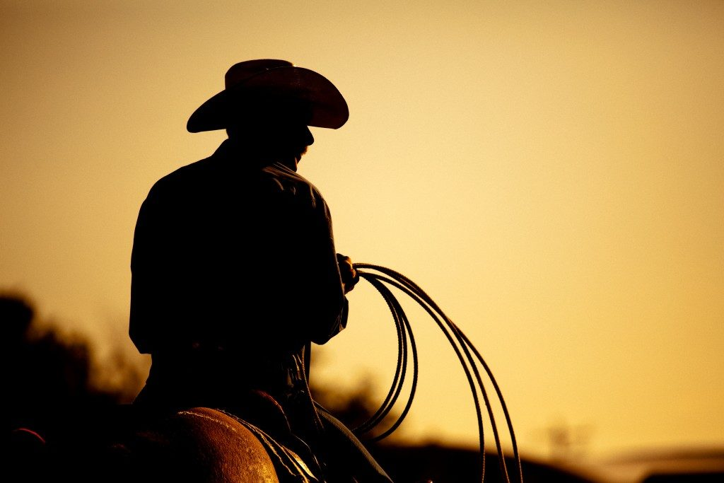 cowboy wearing hat with lasso in hand while riding on horse
