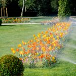 a lawn with sprinklers